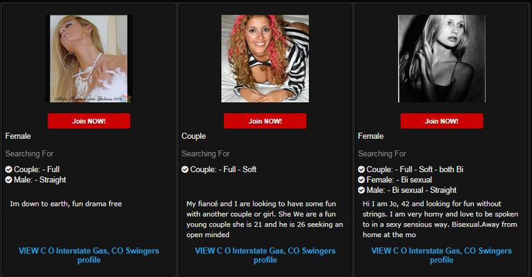 Swinger Date Club website
